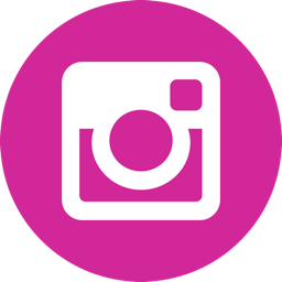 Instagram Follow Button: Add the Instagram Button to Your