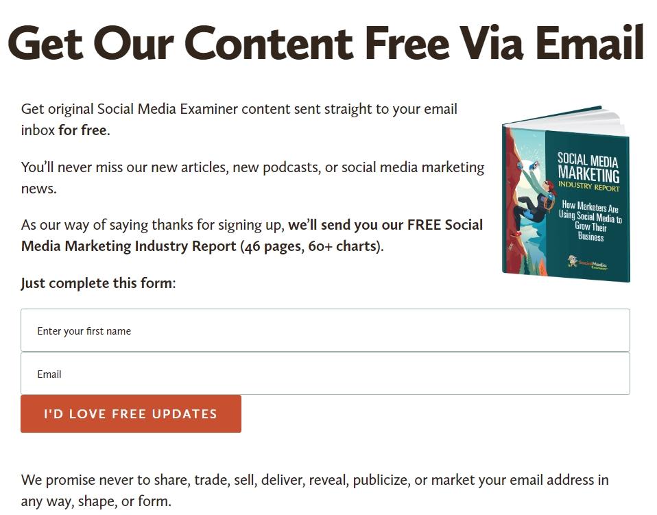 Social Media Examiner's Newsletter Page