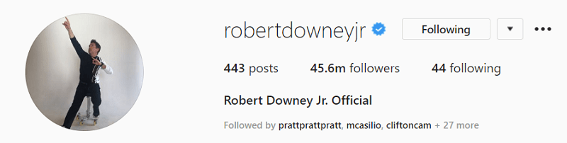 Tips for Taking the Perfect Instagram Profile Picture- Robert Downey Jr.