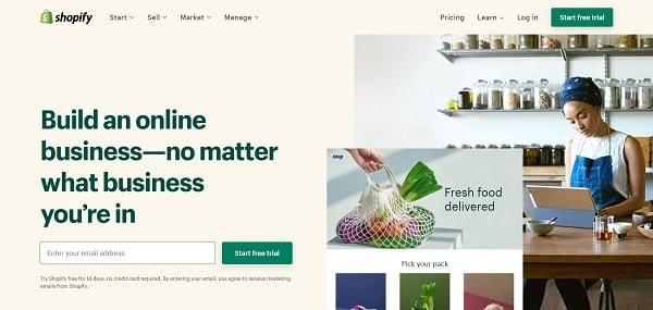 Shopify vs. WordPress: Shopify Website